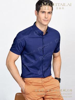 <b>男士蓝色短袖衬衣</b>